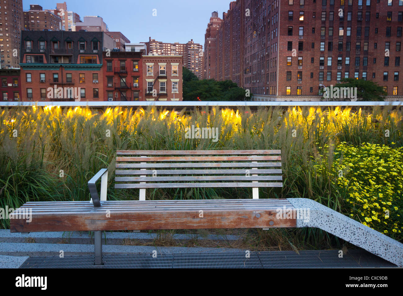 Bench At High Line Park In New York City With Buildings In