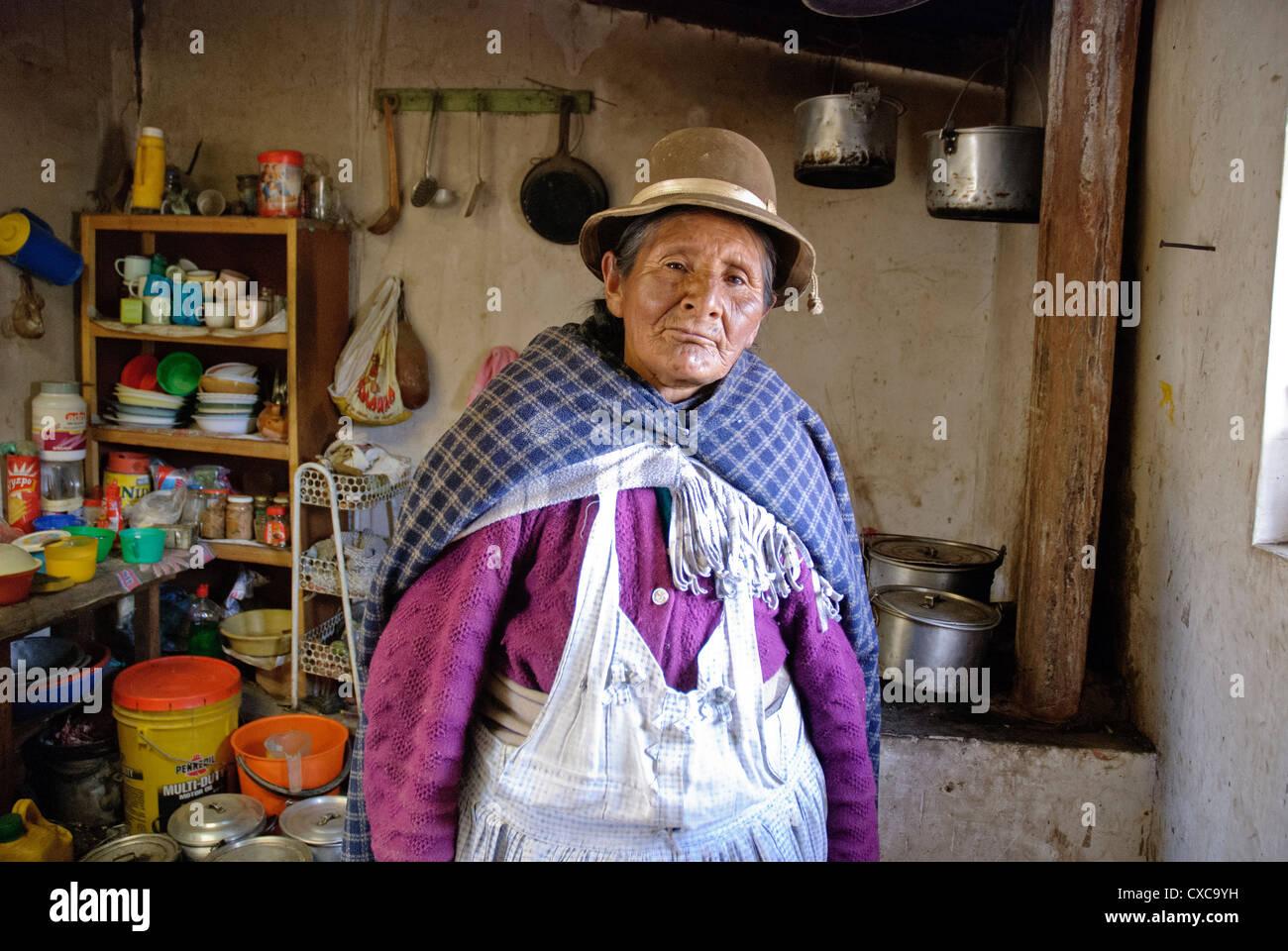 Aymara old woman in the Cordillera - Stock Image