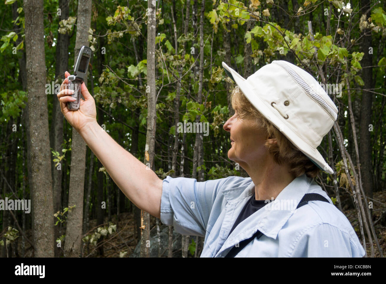 Trying for Reception. A woman hiking in the woods tests her clam shell mobile phone for reception. There is none. - Stock Image