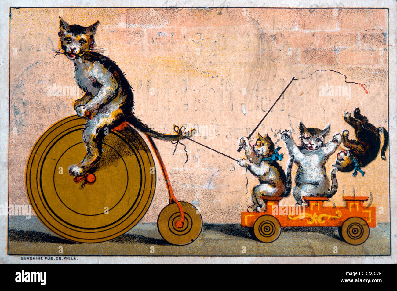 Cat Riding Bicycle Towing Wagon With Kittens Phelps Dodge And