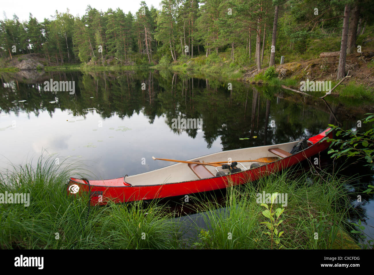 Cano on a lake in Sweden - Stock Image