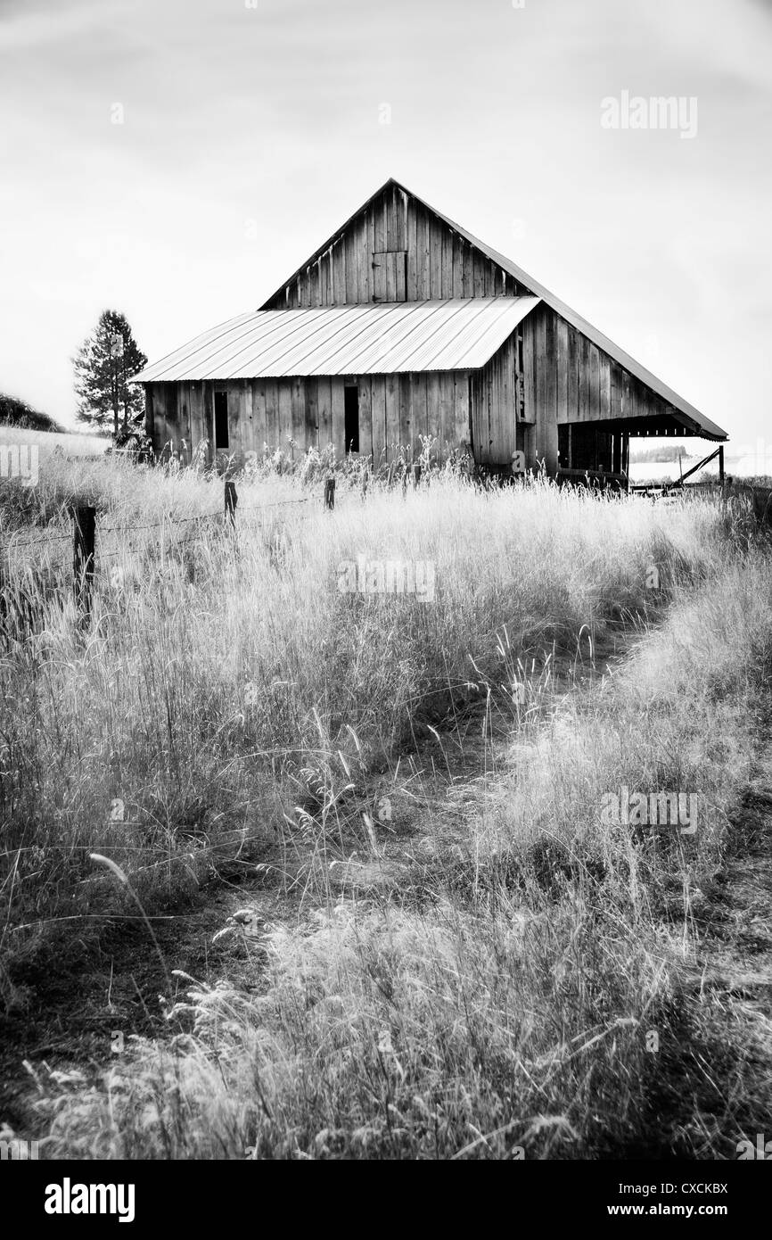 Abandoned Barn in Black and White - Stock Image