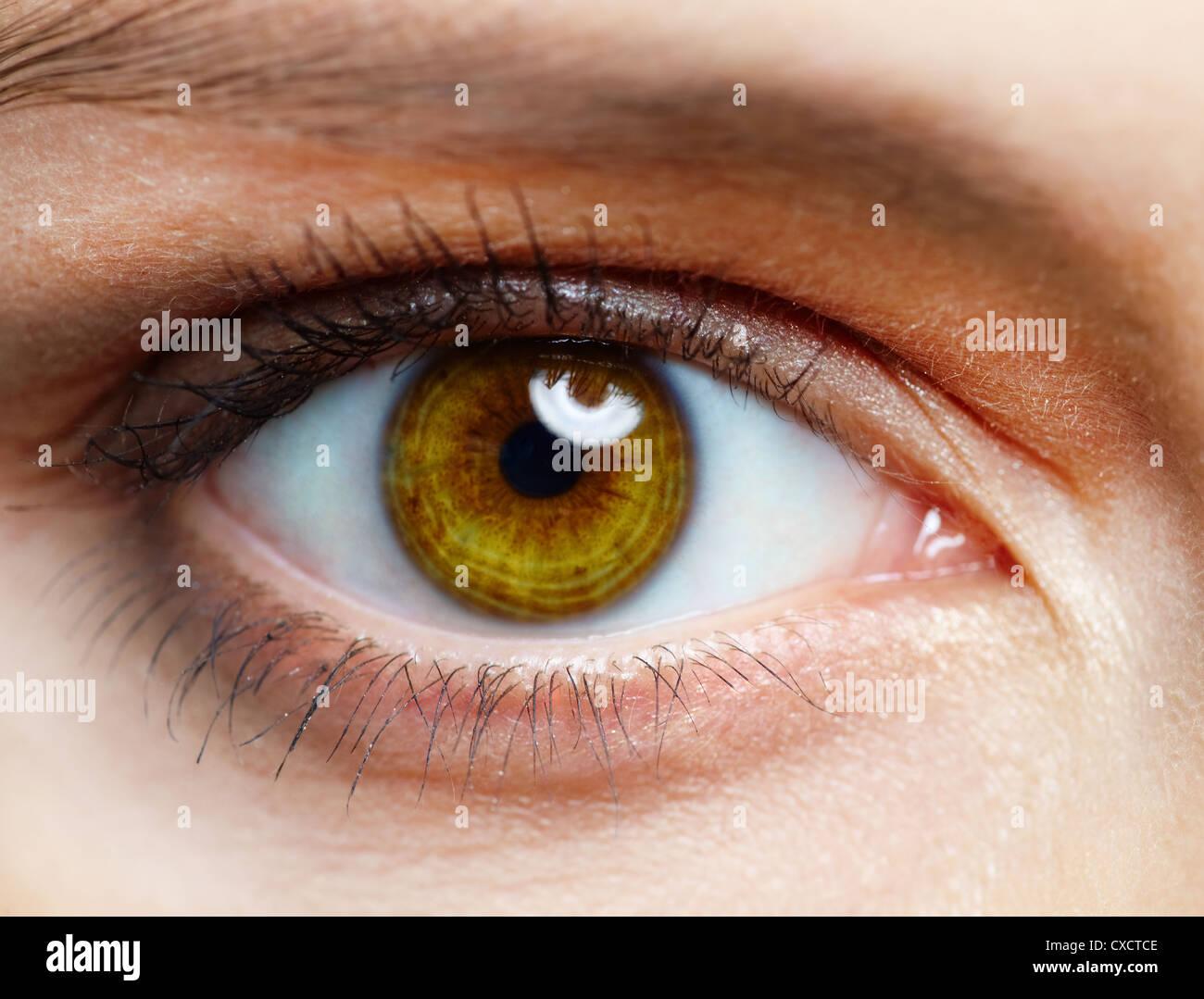 Macro image of human eye - Stock Image