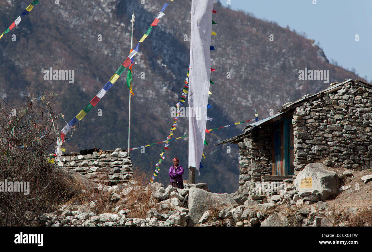 Nepali woman standing next to her traditional stone house surrounded by colourful prayerflags, Langtang village, - Stock Image