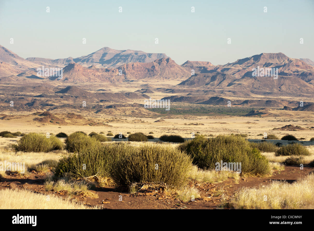 Huab River Valley, Torra Conservancy, Damaraland, Namibia, Africa - Stock Image