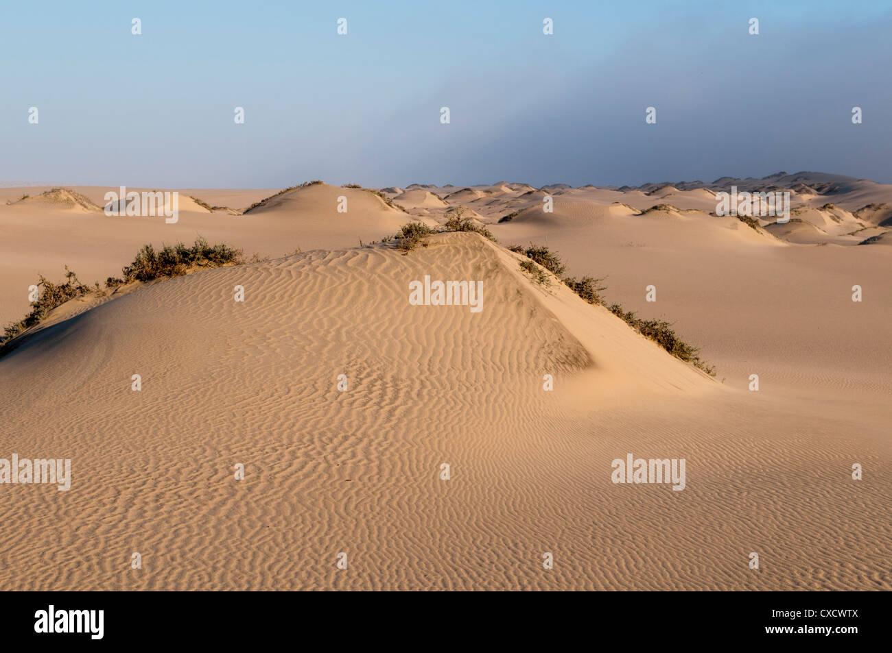 Sand dunes, Skeleton Coast National Park, Namibia, Africa - Stock Image