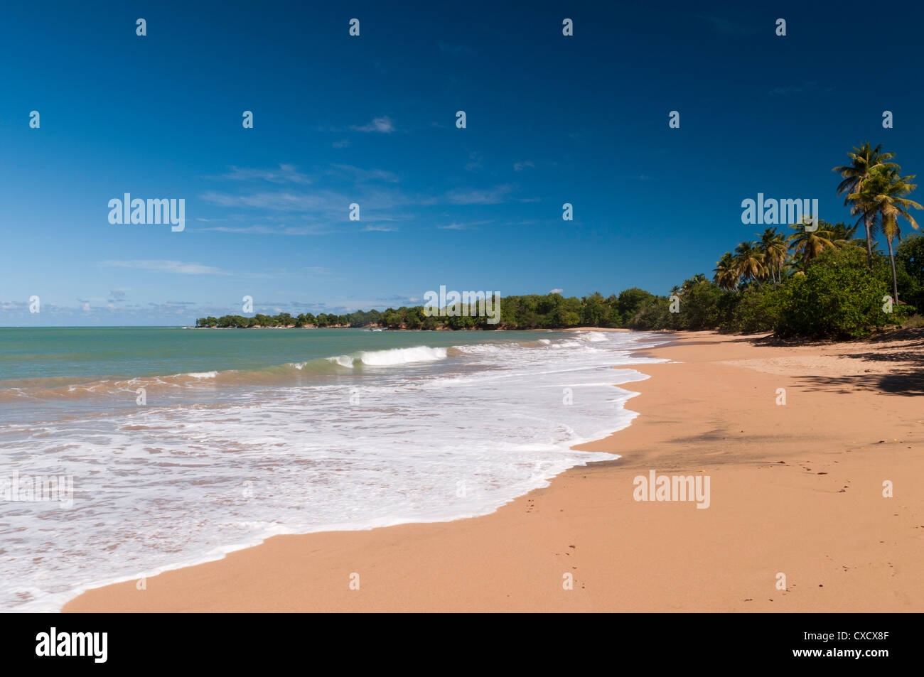Cluny Beach, Deshaies, Basse-Terre, Guadeloupe, French Caribbean, France, West Indies, Central America Stock Photo