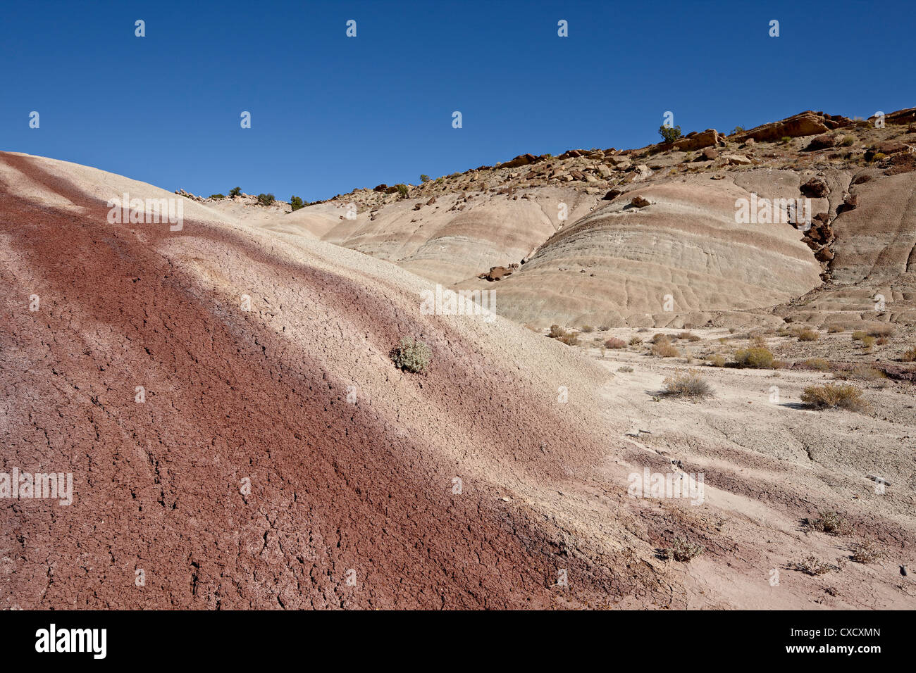 Badlands with maroon color, Capitol Reef National Park, Utah, United States of America, North America - Stock Image