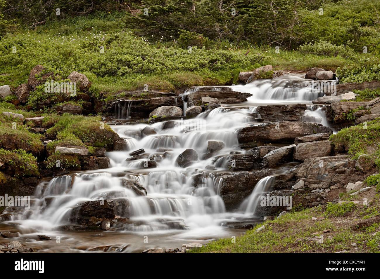 Falls on Logan Creek, Glacier National Park, Montana, United States of America, North America - Stock Image