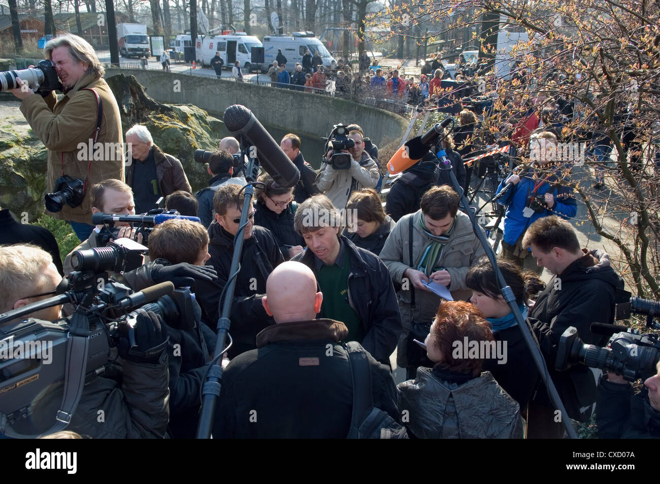 Berlin, media frenzy at the zoo - Stock Image