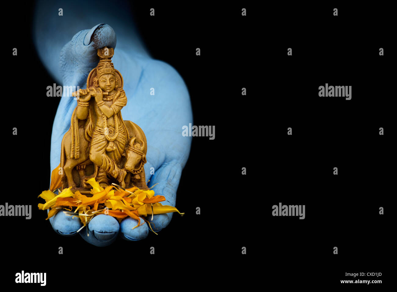 blue indian mans hand holding lord krishna statue and flower petals CXD1JD