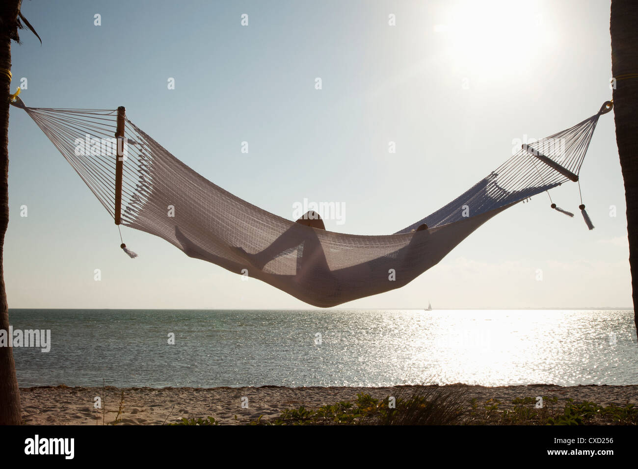 Woman in a hammock on the beach, Florida, United States of America, North America - Stock Image