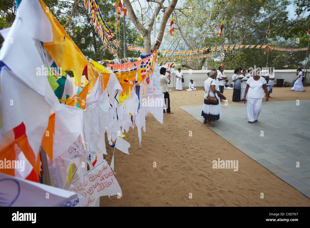 People praying at Sri Maha Bodhi (sacred bodhi tree), Anuradhapura, North Central Province, Sri Lanka Stock Photo
