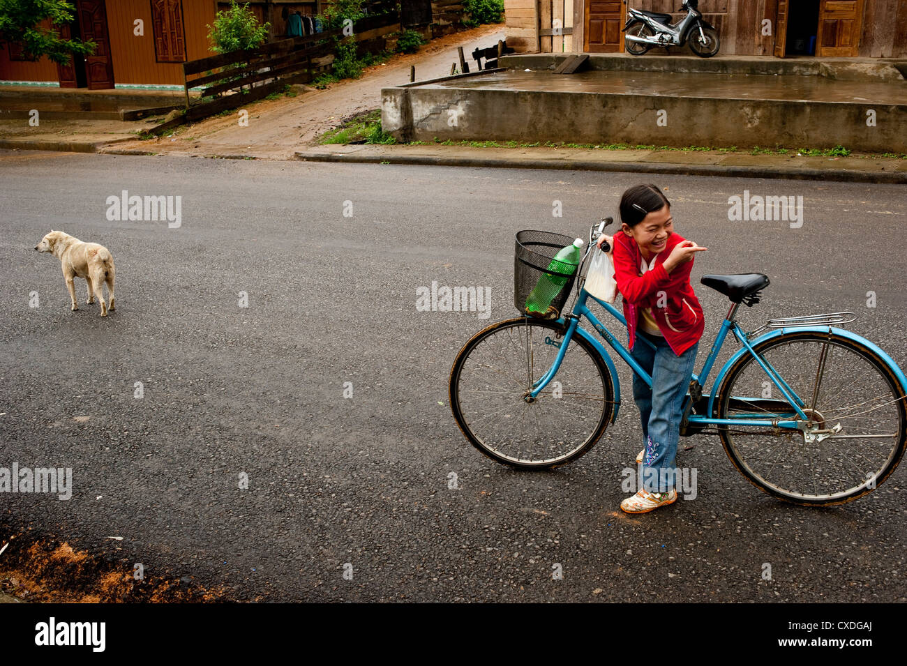A young girl on a bicycle with a dog on the road North-Vietnam - Stock Image