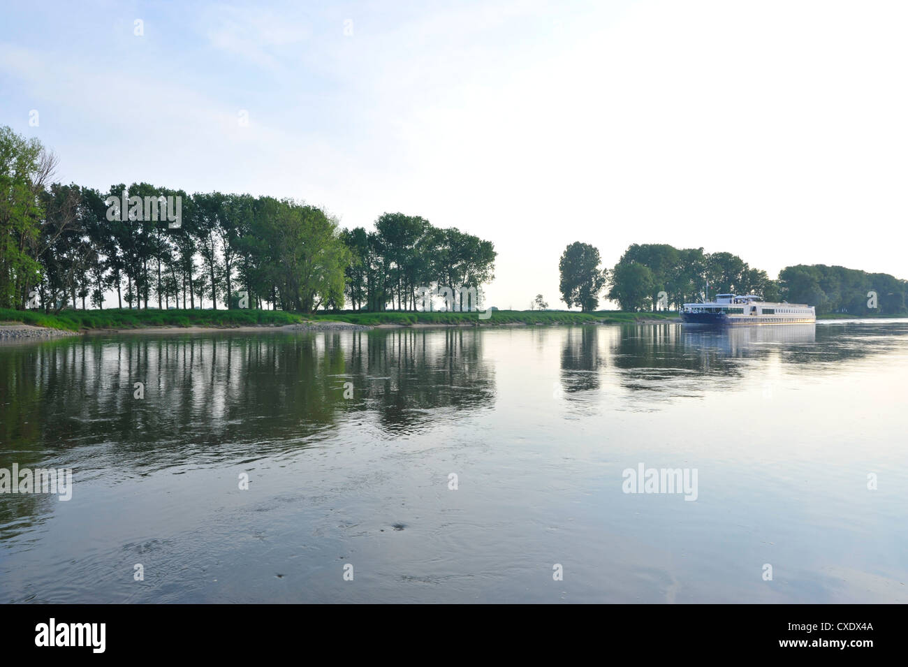 Cruise ship on the Elbe at Elster, Saxony-Anhalt, Germany, Europe - Stock Image