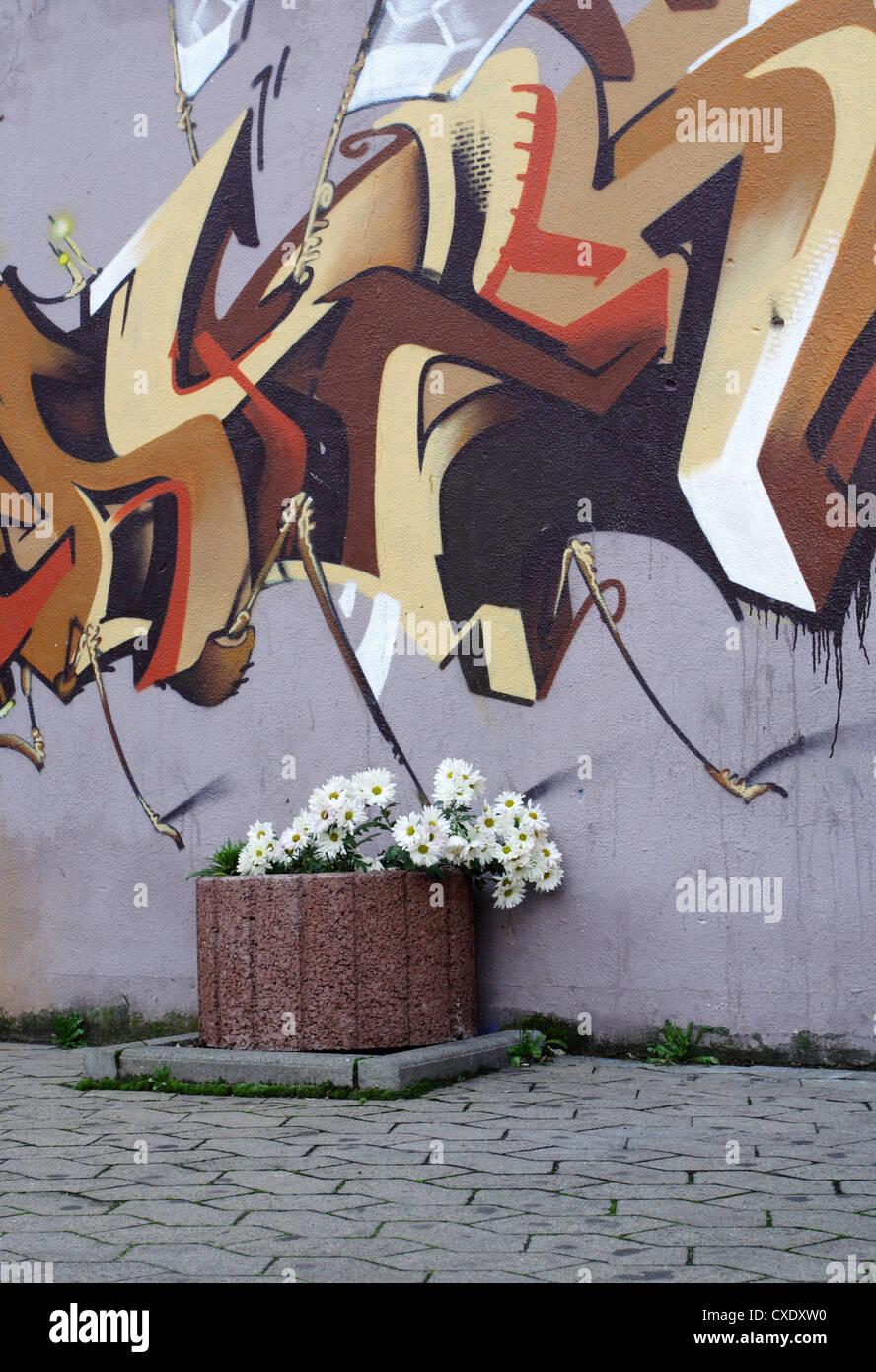 Saarbruecken, Blumenkuebel planted and sprayed with graffiti wall Stock Photo