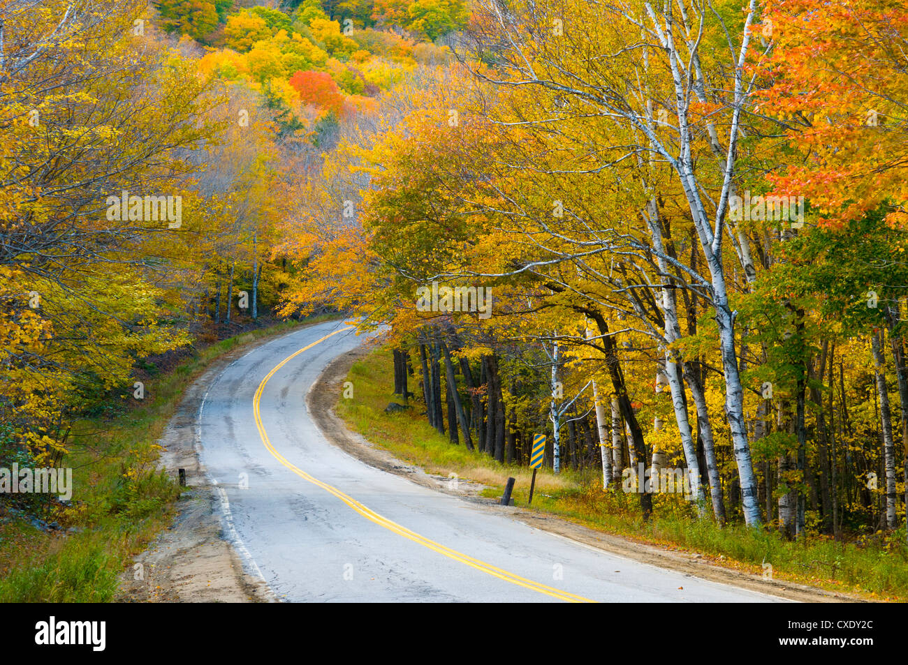 Grafton Notch State Park, Maine, New England, United States of America, North America - Stock Image