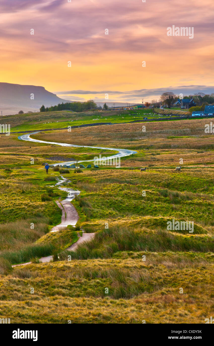 Pen-y-ghent one of the Yorkshire Three Peaks, Ribble Valley, Yorkshire Dales National Park, North Yorkshire, England, - Stock Image