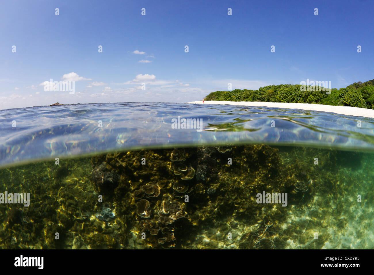 Half underwater split view of Coral Beach on Pigeon Island National Park, Trincomalee, Sri Lanka, Asia - Stock Image