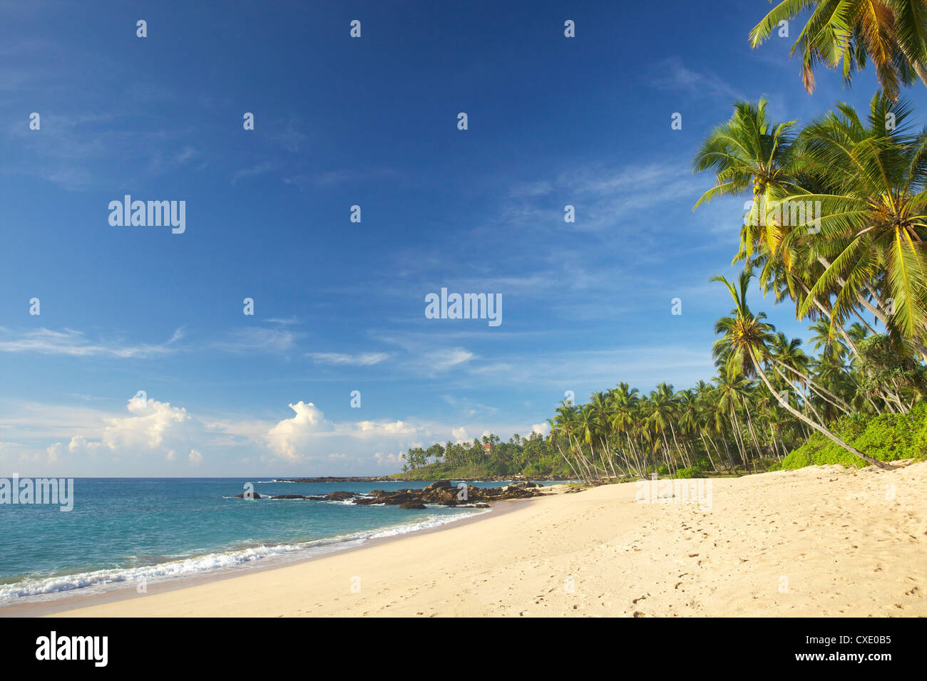 View of the unspoilt beach at Palm Paradise Cabanas, Tangalle, South coast, Sri Lanka, Asia - Stock Image