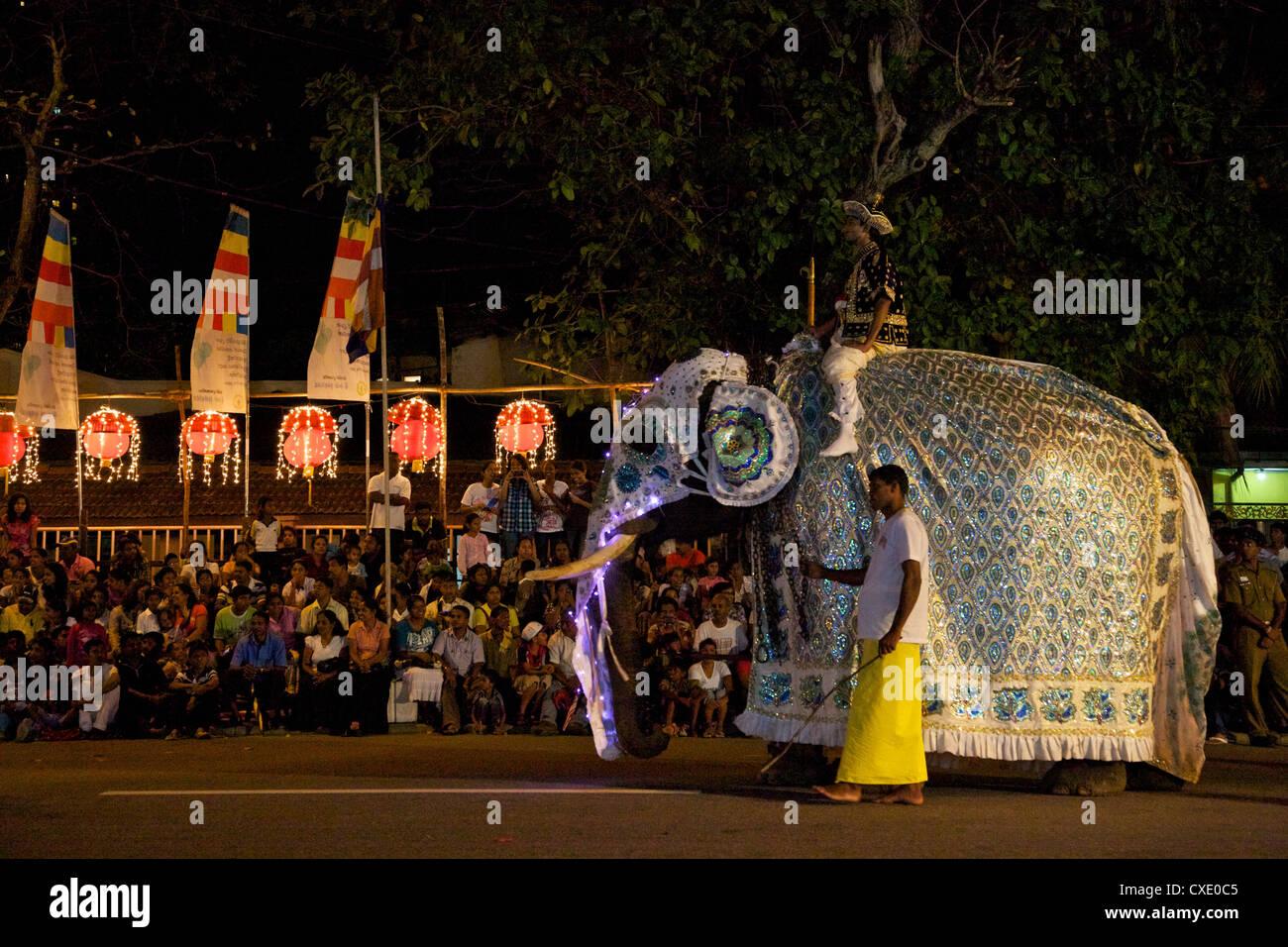 Ceremonial elephant in the Navam Maha Perahera, Colombo, Sri Lanka - Stock Image