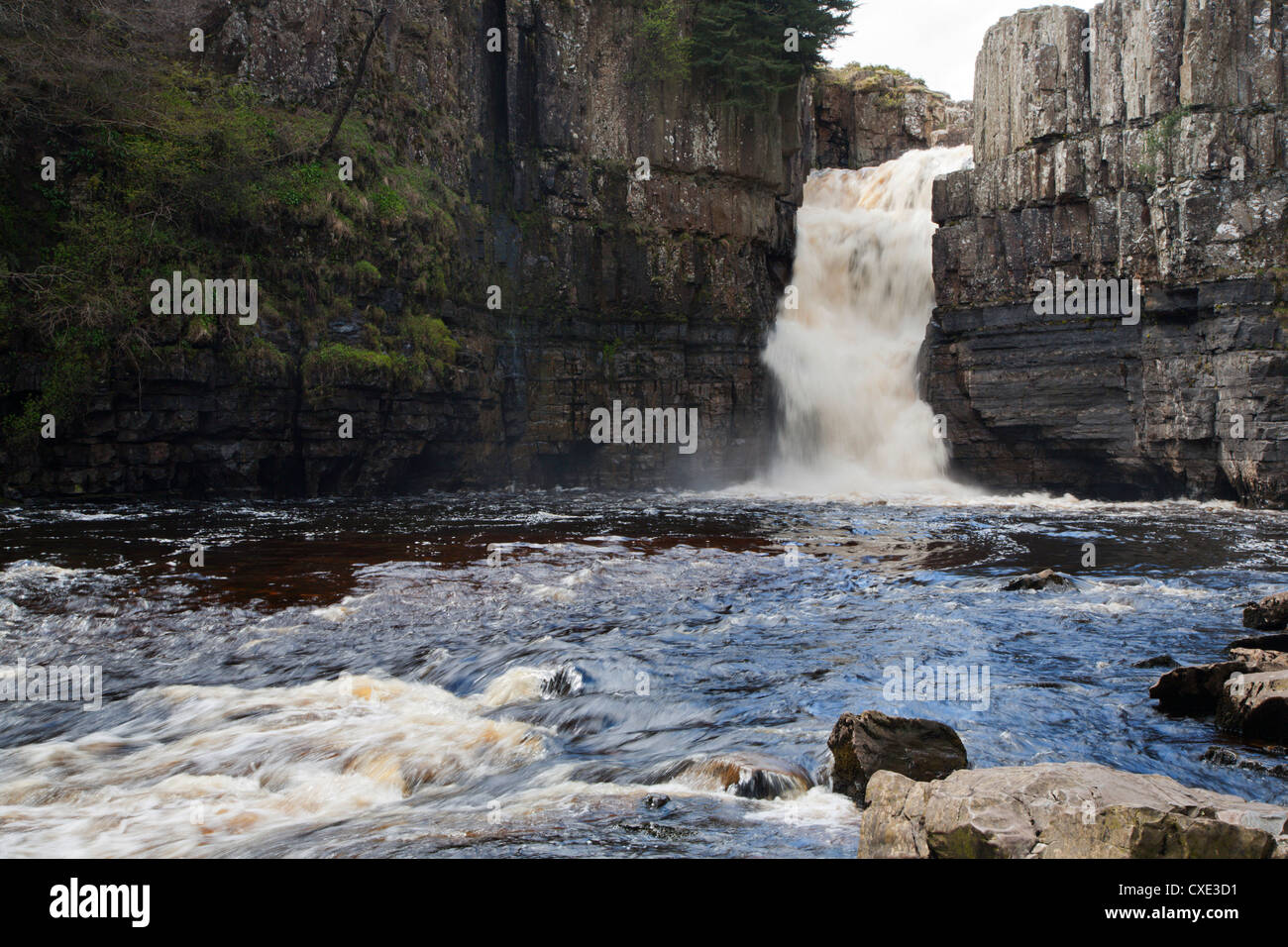 High Force in Upper Teesdale, County Durham, England - Stock Image