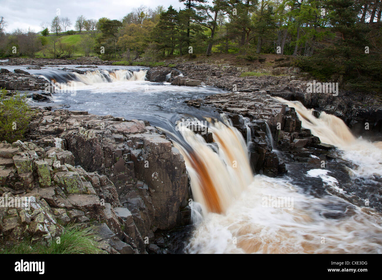 Low Force in Upper Teesdale, County Durham, England - Stock Image