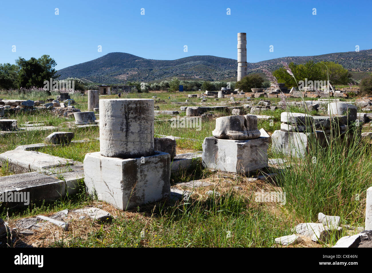 Ireon archaeological site with columns of the Temple of Hera, Ireon, Samos, Aegean Islands, Greece - Stock Image