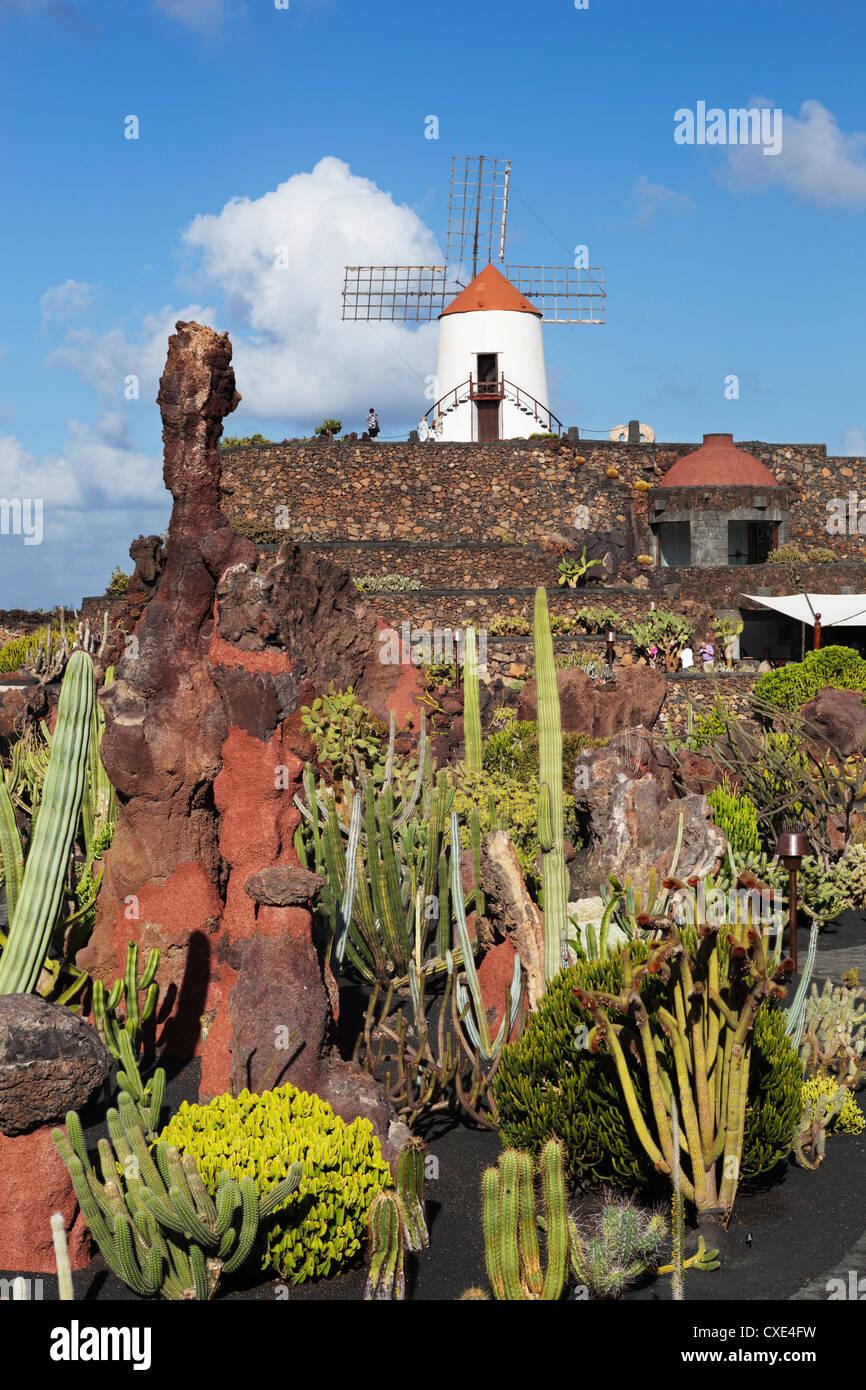 Jardin de Cactus (Cactus Garden), Guatiza, Lanzarote, Canary Islands, Spain - Stock Image