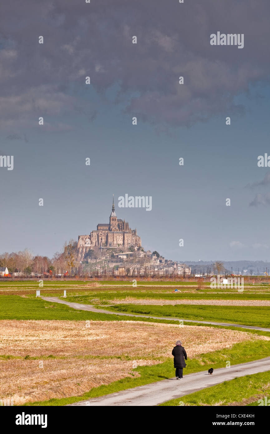 Mont St. Michel, UNESCO World Heritage Site, Normandy, France, Europe - Stock Image