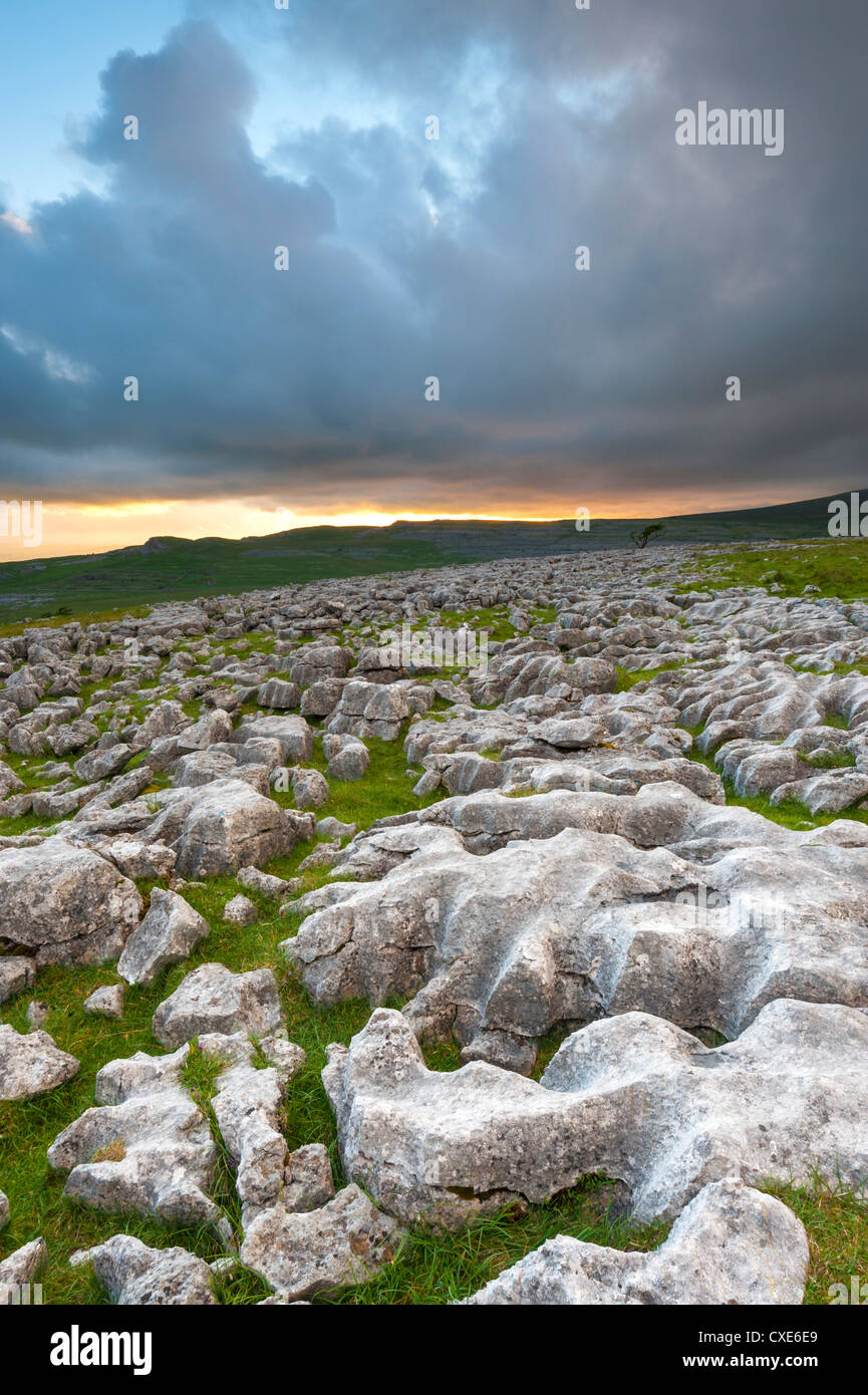 Twistleton Scar Limestone Pavement, Ingleton, Yorkshire Dales, Yorkshire, England, United Kingdom, Europe - Stock Image