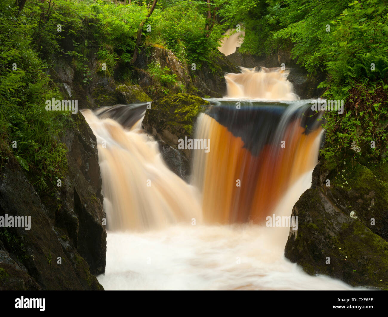 Ingleton Waterfalls, River Twiss, Ingleton, Yorkshire Dales, Yorkshire, England, United Kingdom, Europe - Stock Image