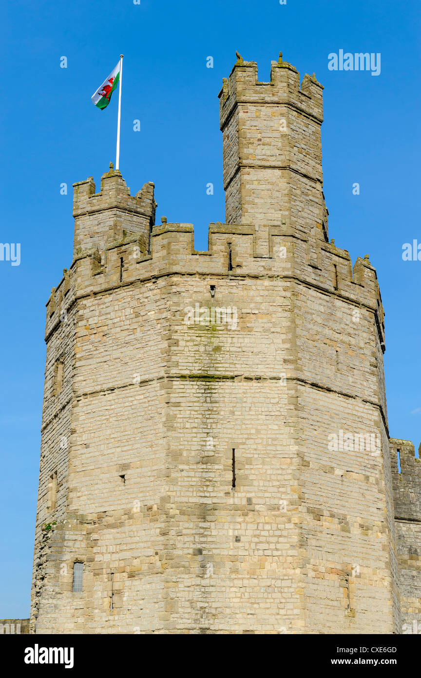 Caernarfon Castle turret, UNESCO World Heritage Site, Caernarfon, Gwynedd, North Wales, Wales, United Kingdom, Europe - Stock Image