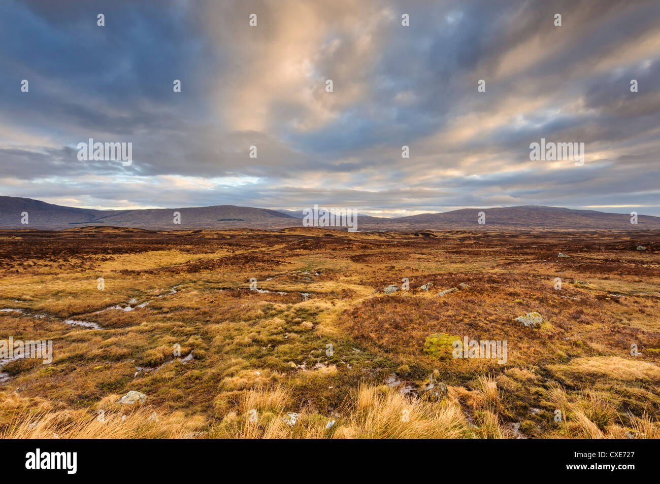Dawn over open expanse of Rannoch Moor, near Glencoe, Scottish Highlands, Scotland - Stock Image