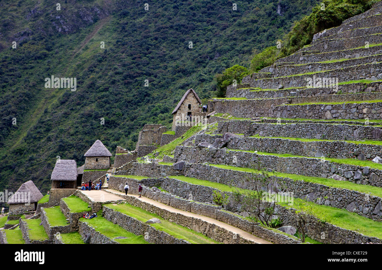 Agricultural terraces , Machu Picchu, peru, South America. The lost city of the Inca was rediscovered by Hiram Bingham - Stock Image