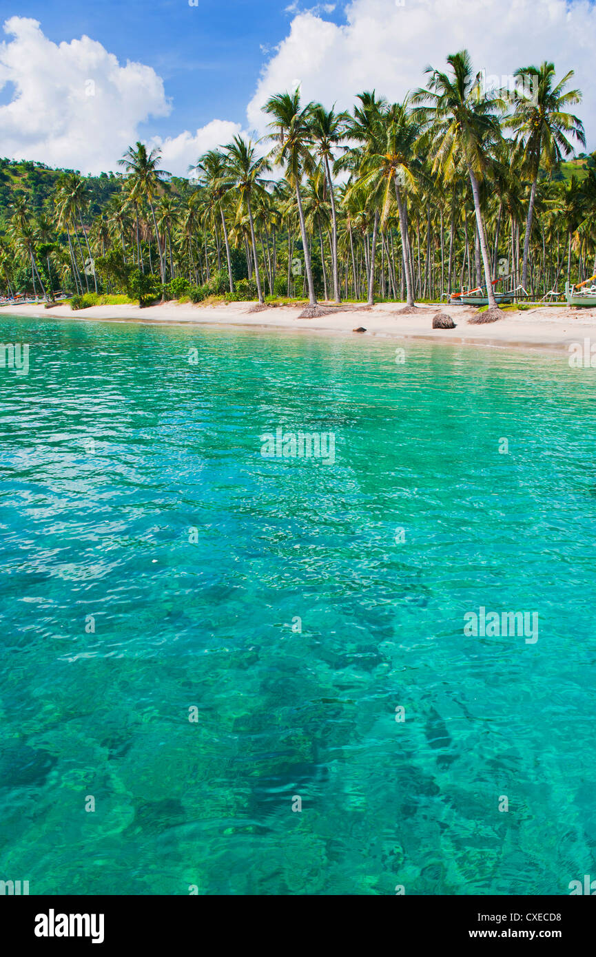 Palm trees and turquoise water, Nippah Beach, Lombok, West Nusa Tenggara, Indonesia, Southeast Asia, Asia Stock Photo