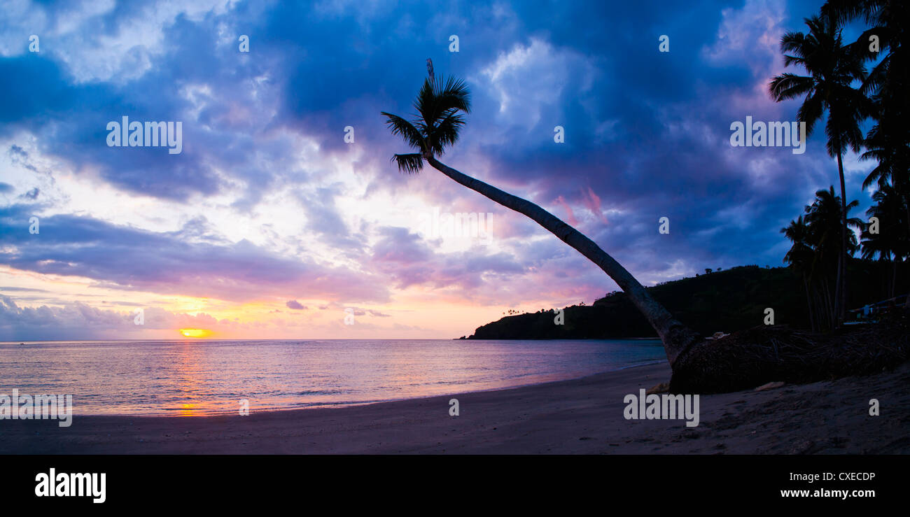 Palm tree silhouette at sunset on the tropical island paradise of Lombok, Indonesia, Southeast Asia, Asia - Stock Image