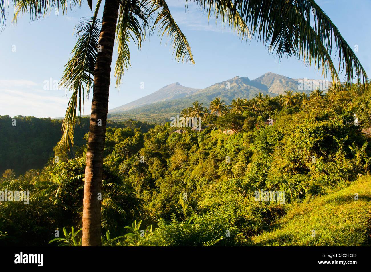 Mount Rinjani Summit, an active volcano on Lombok, Indonesia, Southeast Asia, Asia - Stock Image