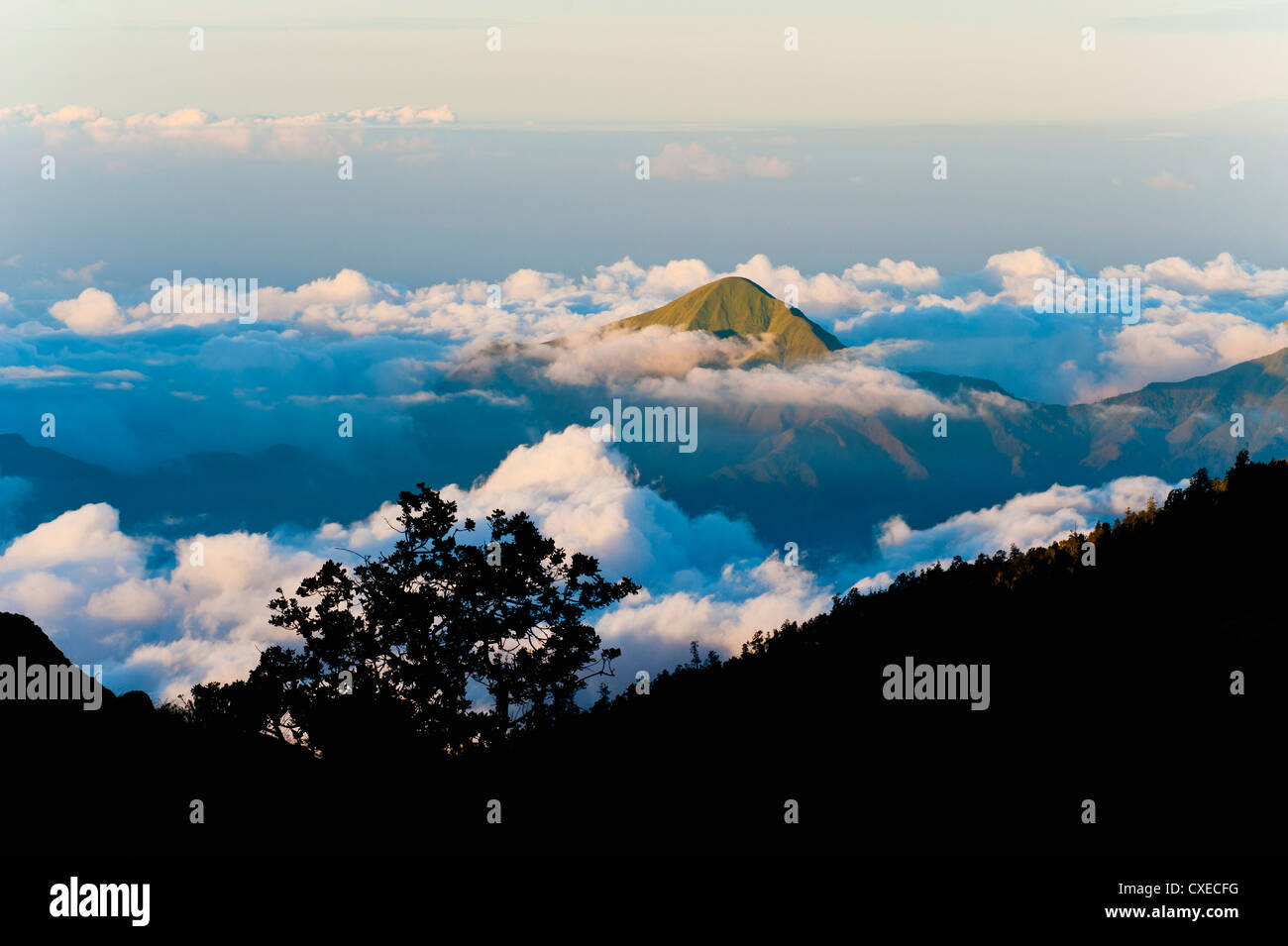 Mountain peaks rising high above the clouds taken from Mount Rinjani volcano, Lombok, Indonesia, Southeast Asia, - Stock Image