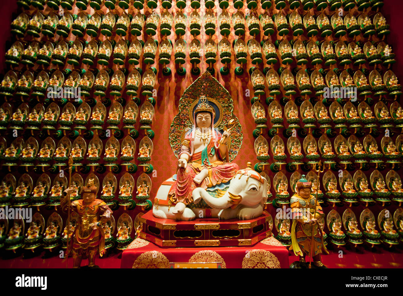 Wall of gold statues at the Buddha Tooth Relic Museum in Chinatown, Singapore, Southeast Asia, Asia - Stock Image