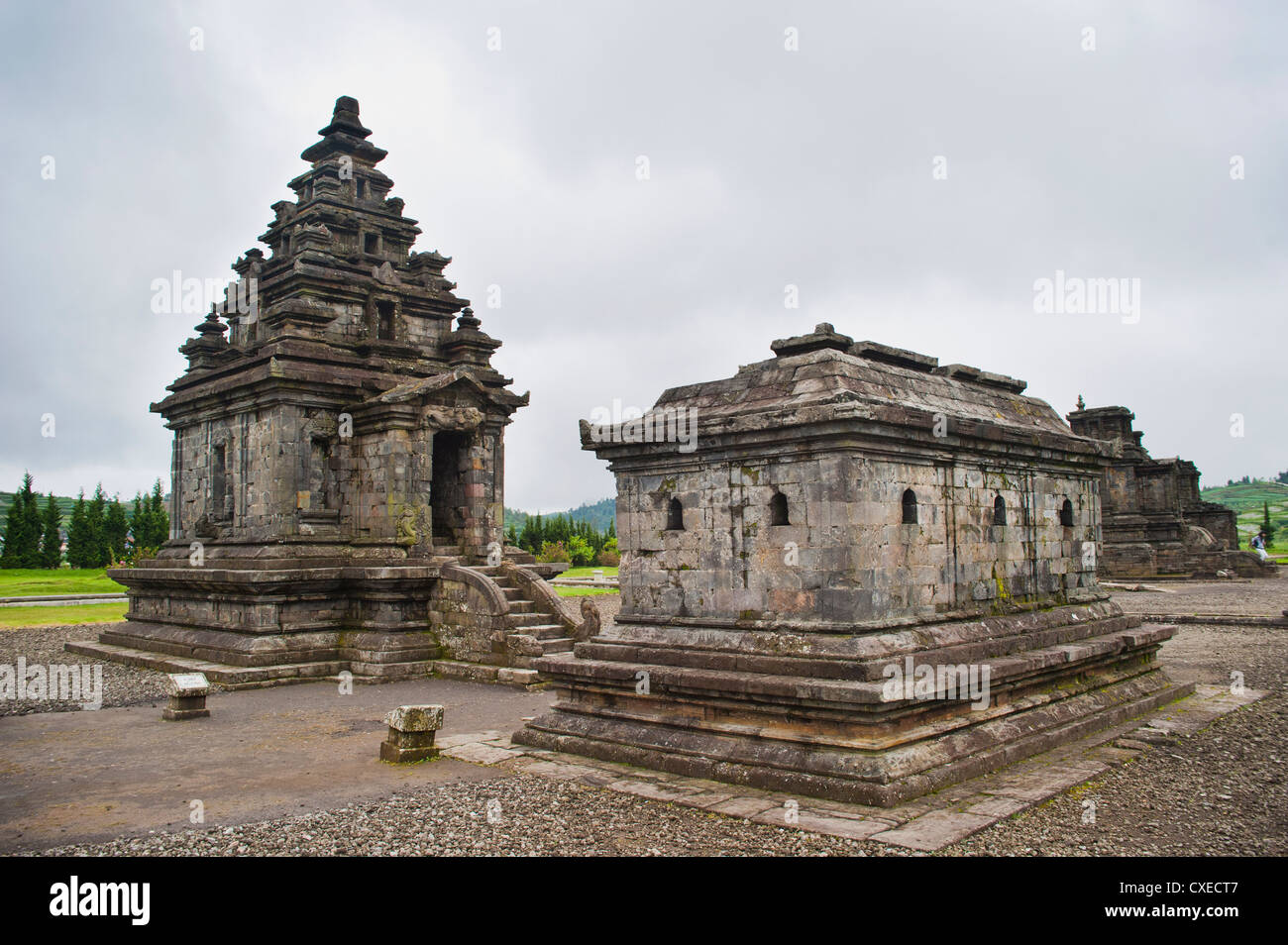 Temples at Candi Arjuna Hindu Temple Complex, Dieng Plateau, Central Java, Indonesia, Southeast Asia, Asia - Stock Image