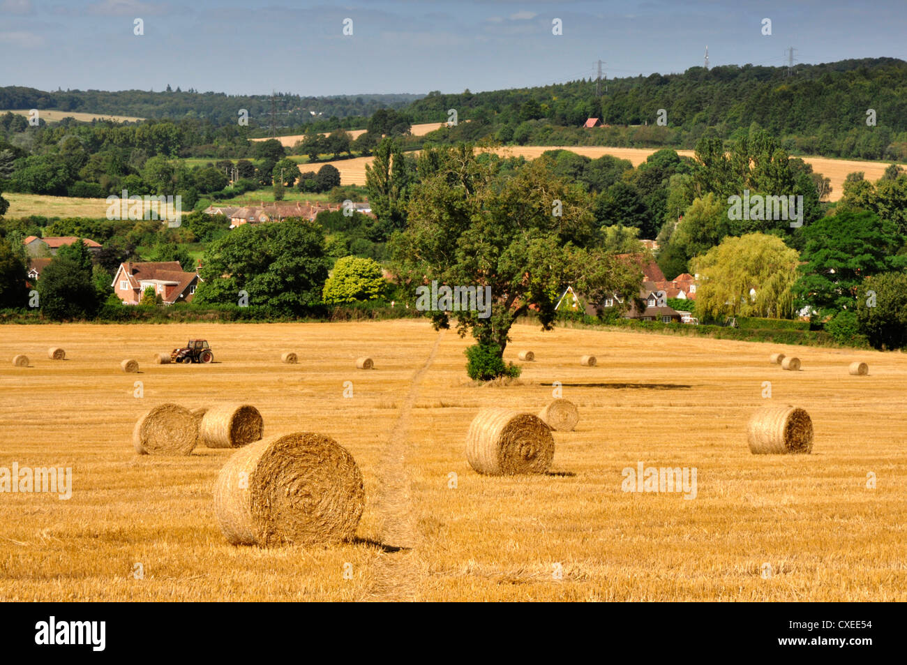 Chiltern Hills - Buckinghamshire - harvested field - golden stubble and straw bales autumn sunlight - Little Missenden - Stock Image