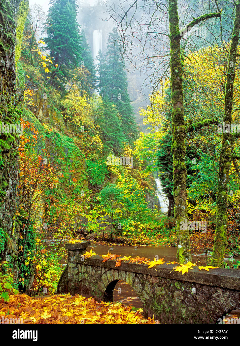 Multnomah Falls with fall color and stone fence. Columbia River Gorge National Scenic Area, Oregon - Stock Image