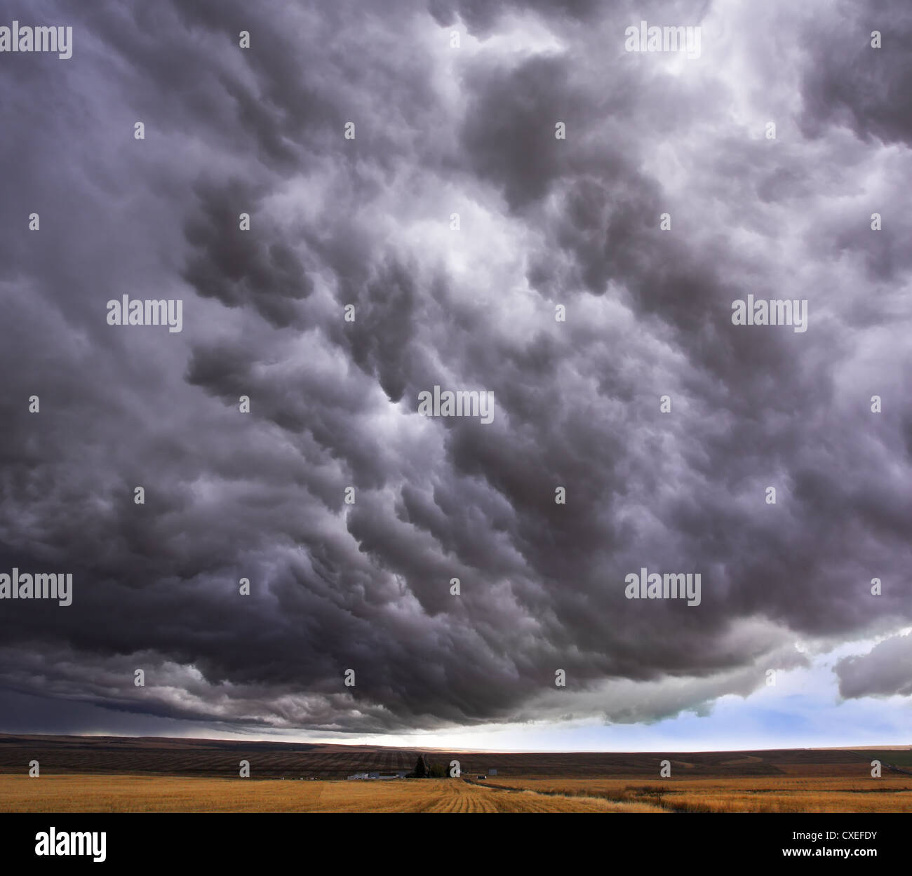 Enormous storm cloud above an  field - Stock Image