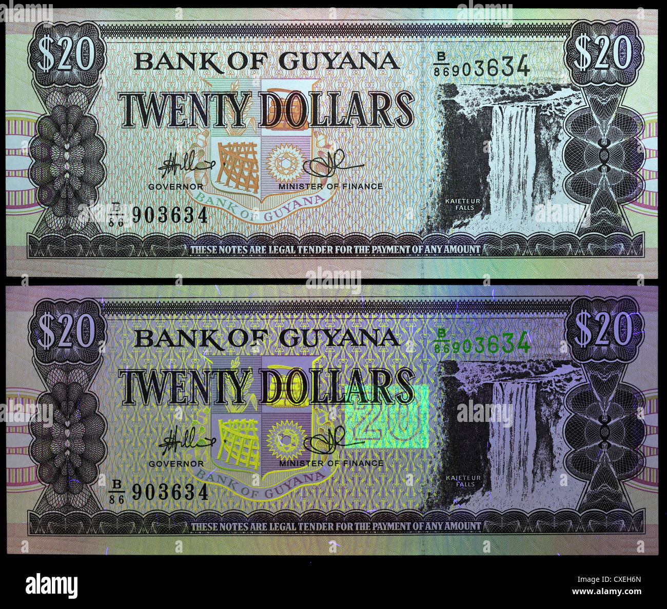 Banknote seen under natural light and UV light, showing security features. 20 Dollar note, Guyana, - Stock Image