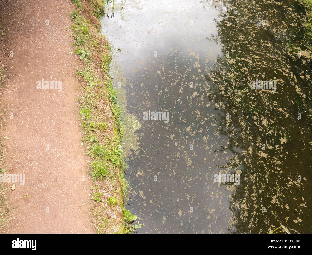 Canal footpath, canal towpath - Stock Image