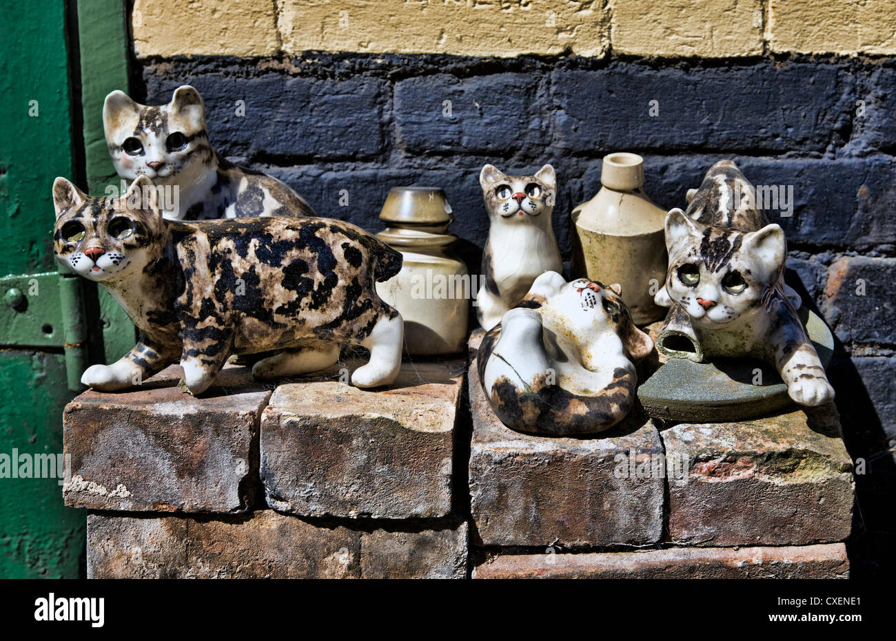 A collection of Winstanley pottery cats arranged outdoors on bricks. Norfolk, UK. Stock Photo
