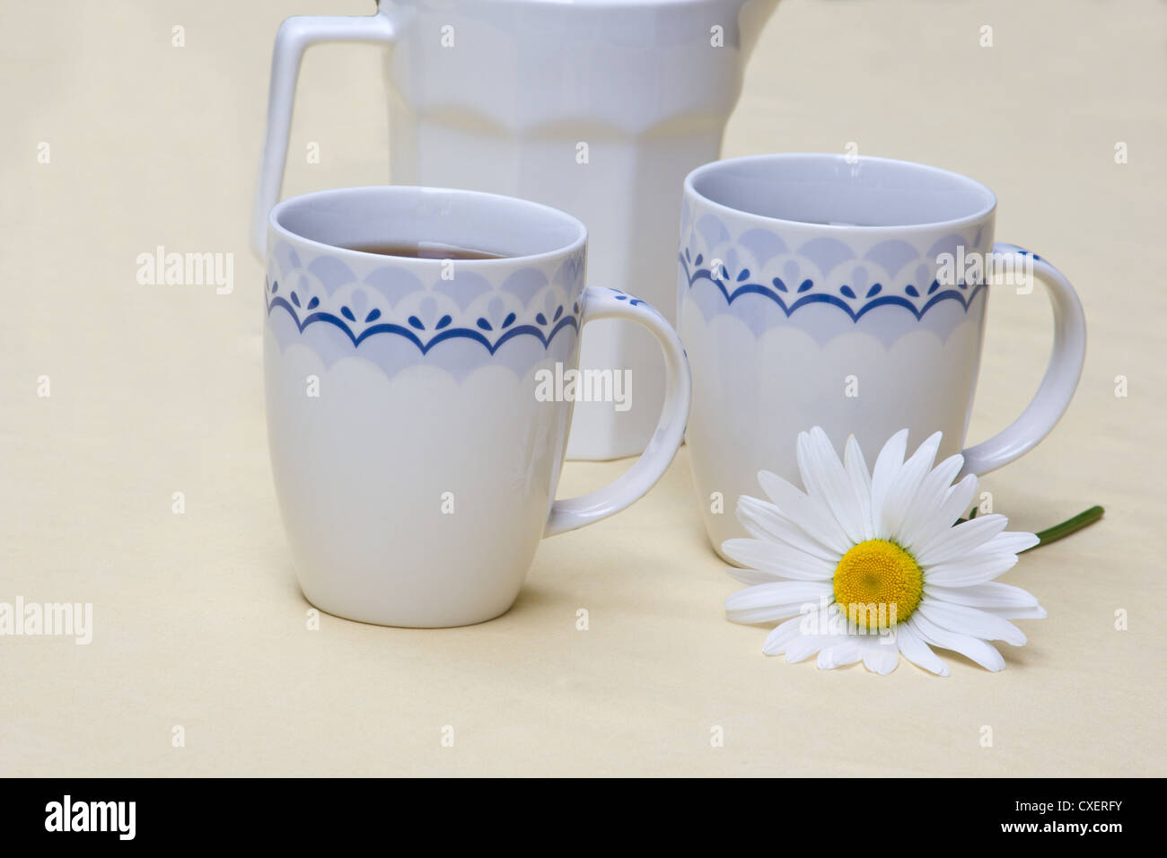 Two mugs of coffee, a jug of milk and a white daisy - Stock Image