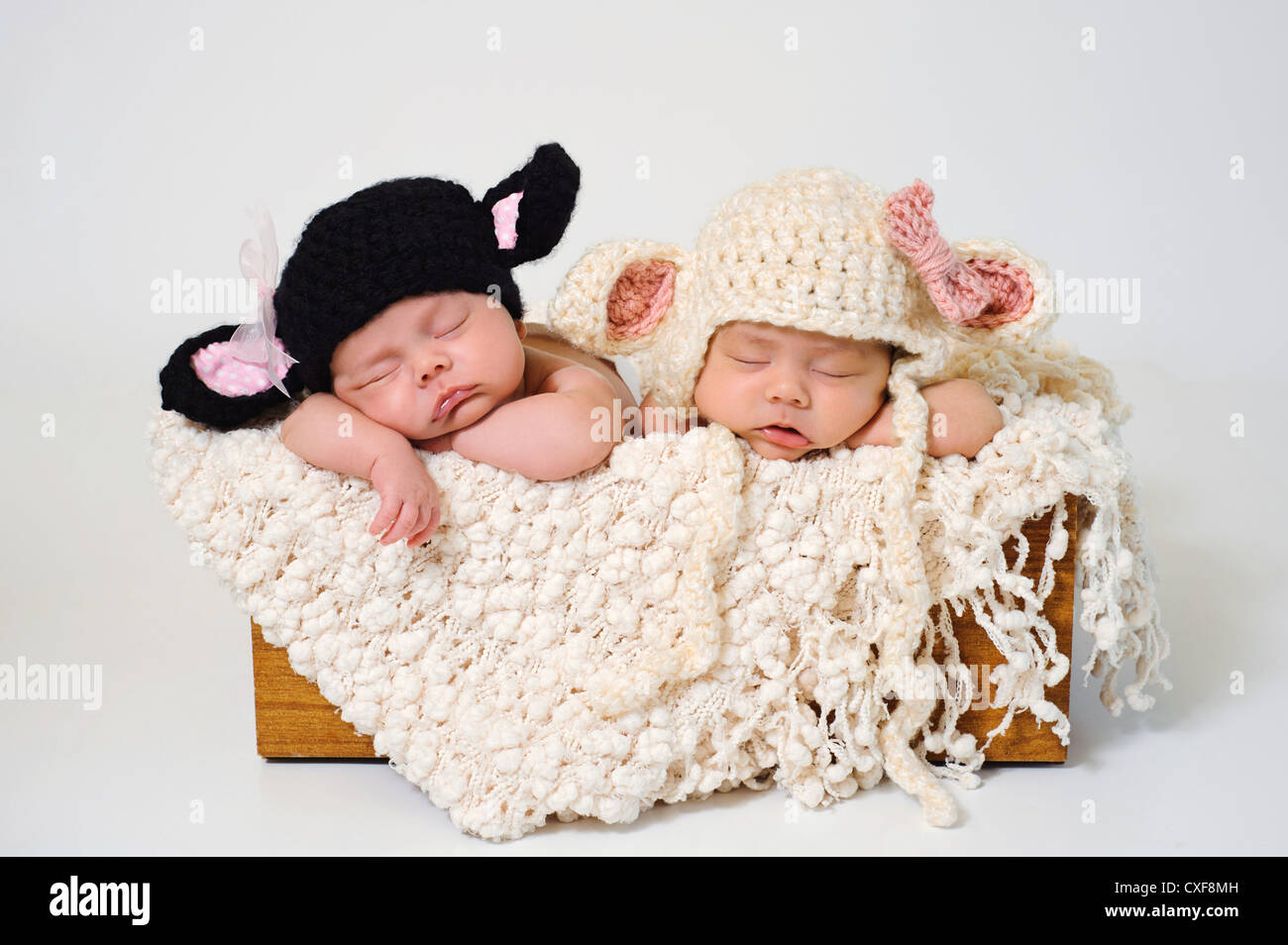 Fraternal twin newborn baby girls wearing black sheep and lamb hats ... 85cae8d7cbe