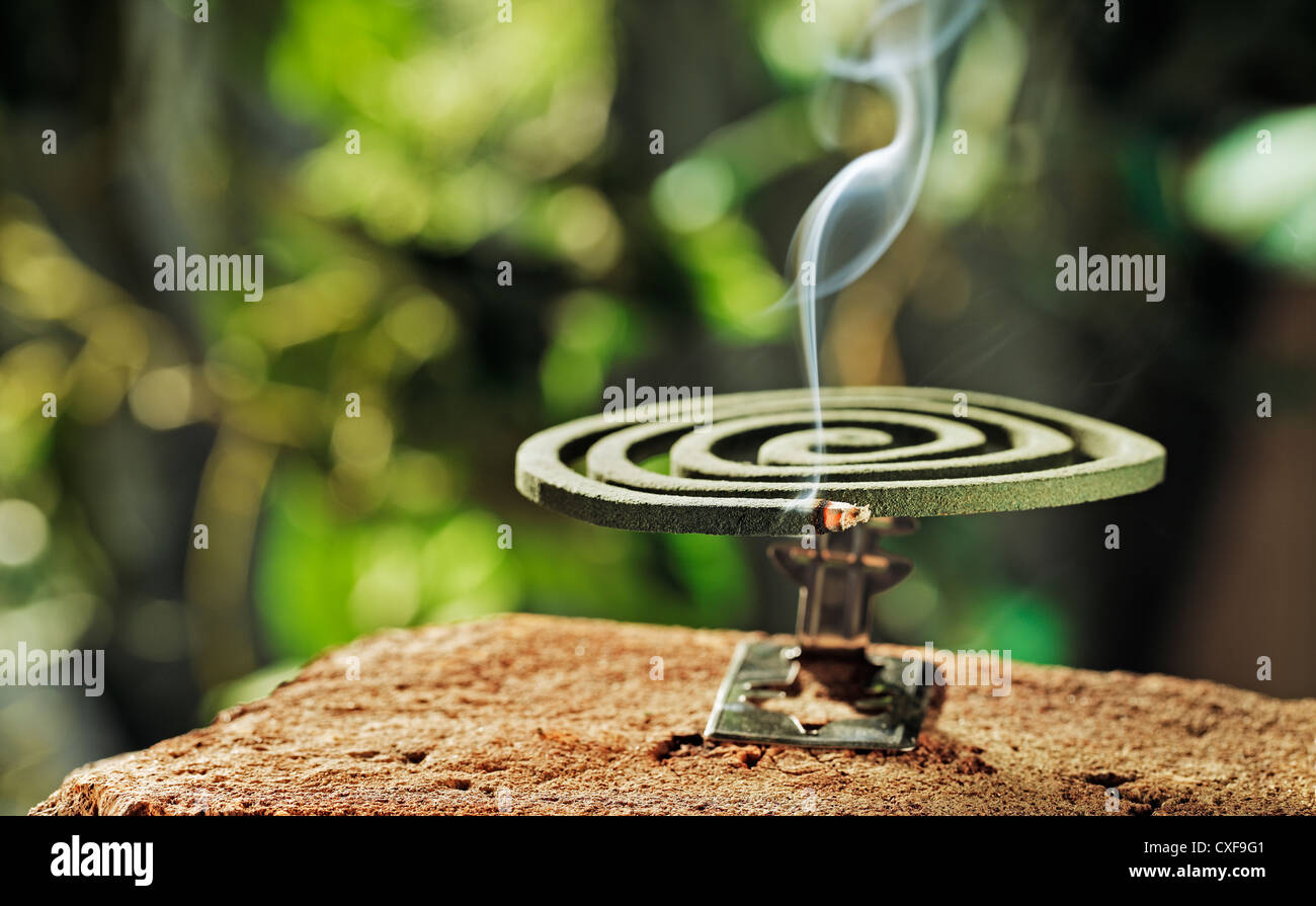 Green spiral insect repellent mosquito coil incense smoking. - Stock Image